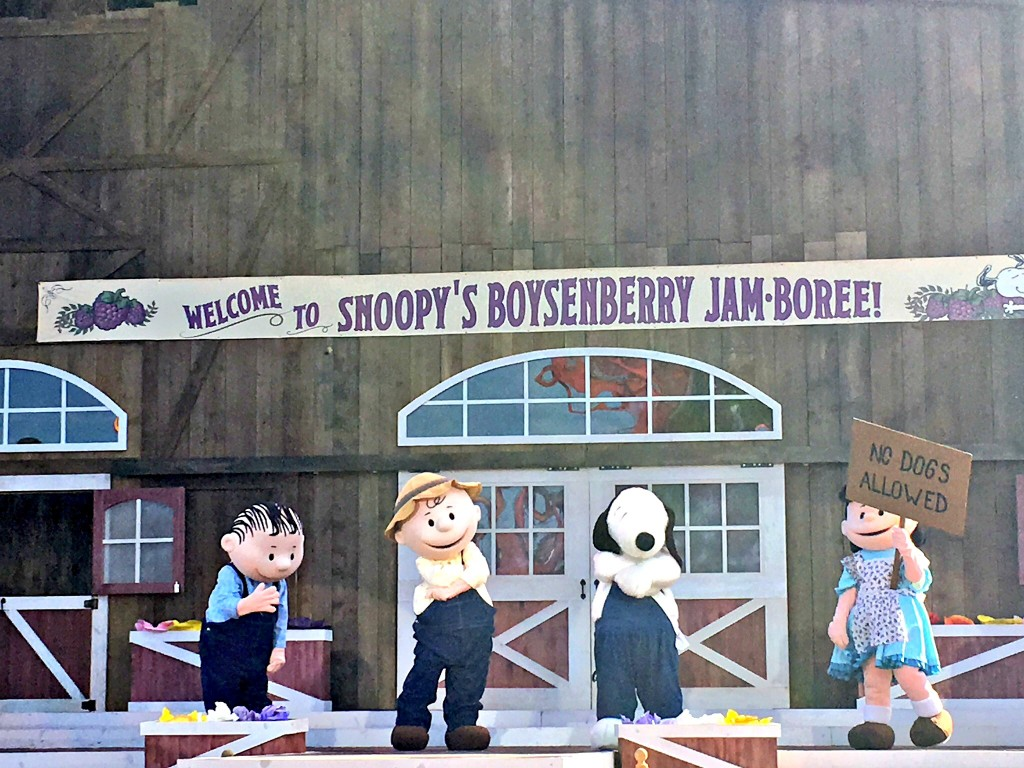 Snoopy celebra Boysenberry Festival