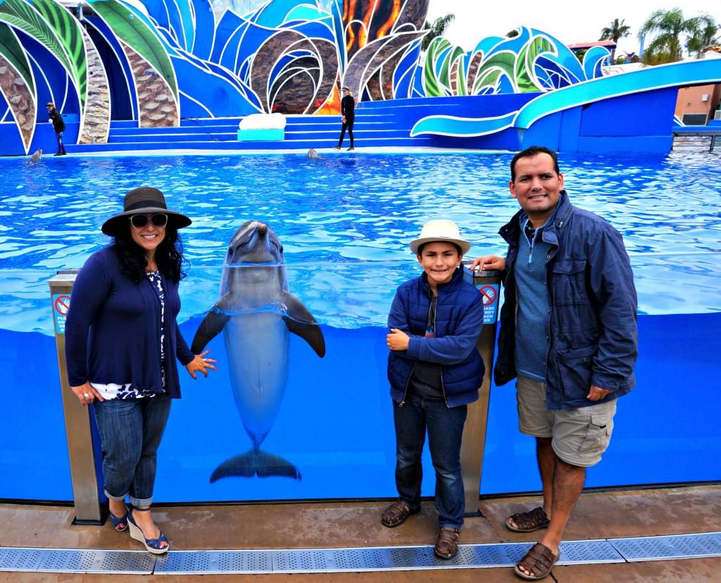 experiecia-con-los-delfines-en-sea-world-san-diego