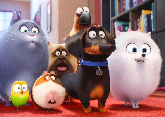 The Secret Life of Pets: Off the Leash